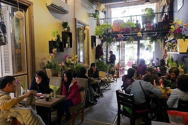 Ohi Tree & Coffee:Ngay khi bước vào cửa quán, bạn sẽ thấy ấn tượng với những chậu cây, hoa nhỏ xinh đủ màu sắc ở trên tường, bàn và cả lối đi