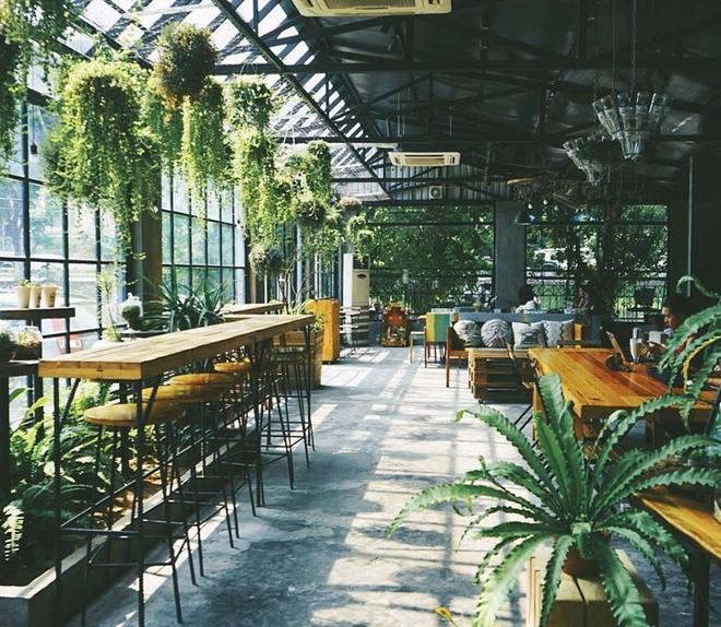 Gardenista:Nằm trên con phố Vạn Bảo đông đúc, quán trông na ná một khu vườn kính bởi không gian ngập tràn cây xanh