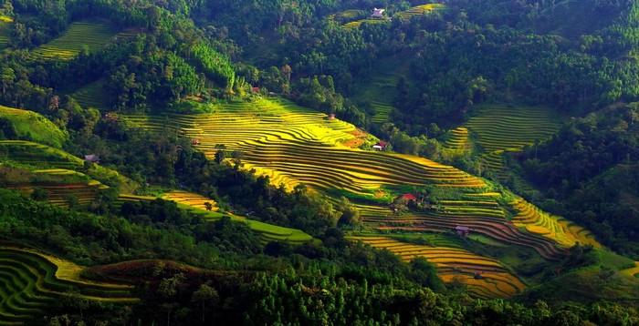 Một bức tranh thu tuyệt mĩ ở Hà Giang dịp tháng 10