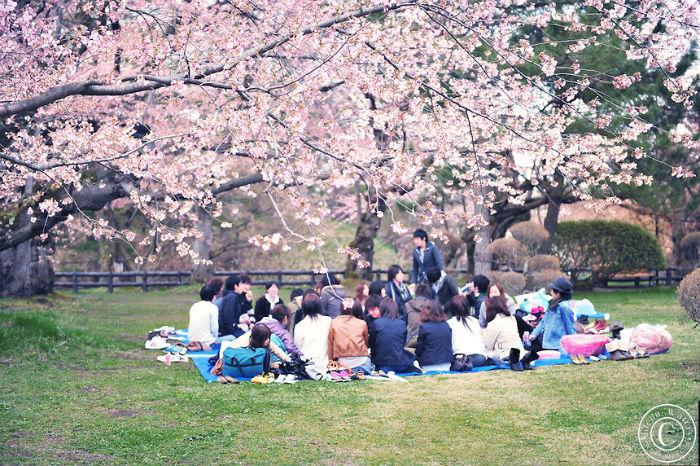 10 điều khiến người Nhật Bản luôn cảm thấy tự hào - Ảnh 5.