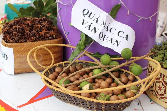 Bên cạnh đó, ban tổ chức cũng giới thiệu đến du khách loại quả mới được trồng tại địa phương là mắc ca.