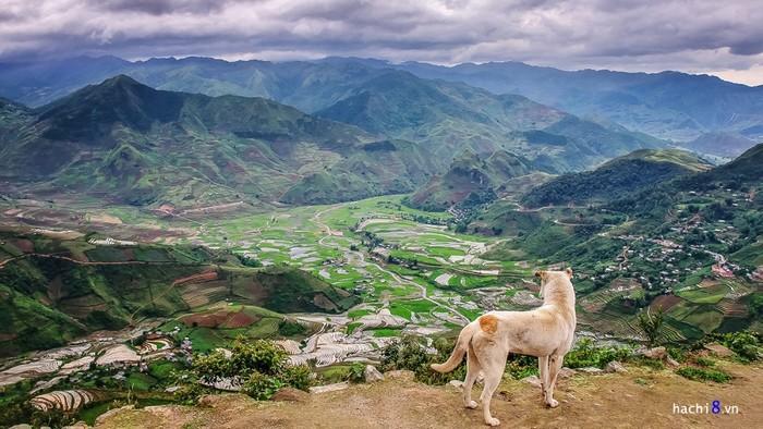 Đứng trên đèo Khau Phạ - một trong những cung đèo hiểm trở nổi tiếng ở Tây Bắc, không khó để nhìn được toàn cảnh thung lũng xinh đẹp này nằm giữa bốn bề núi non.