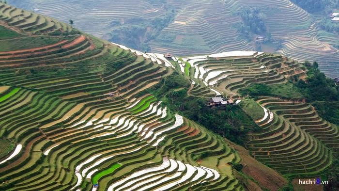 Cao nguyên đá Hà Giang không có quá nhiều ruộng bậc thang nhưng vẻ đẹp lại không hề thua kém nơi nào