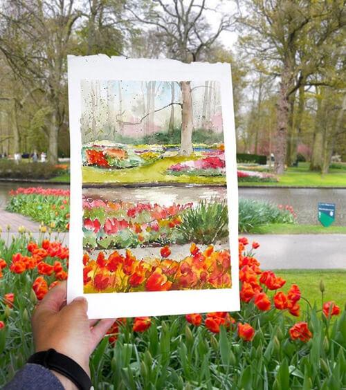 Vườn hoa Keukenhof rực rỡ ở Hà Lan.
