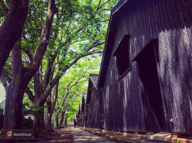 Từng hoang tàn sau trận động đất và sóng thần, vùng đất này đang trở thành điểm du lịch tuyệt đẹp của Nhật Bản - Ảnh 6.