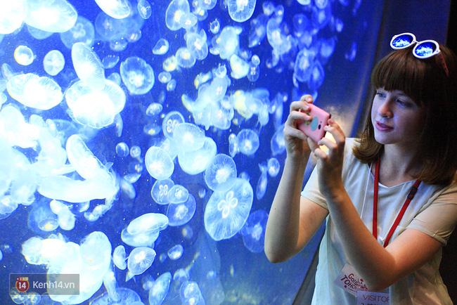 Từng hoang tàn sau trận động đất và sóng thần, vùng đất này đang trở thành điểm du lịch tuyệt đẹp của Nhật Bản - Ảnh 13.