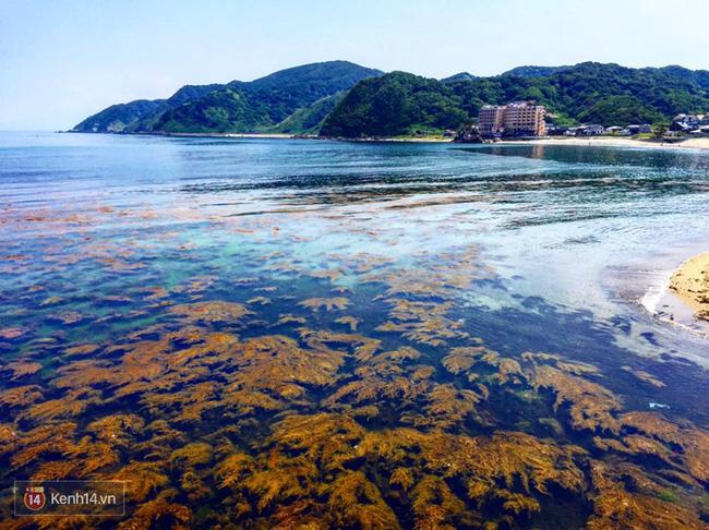 Từng hoang tàn sau trận động đất và sóng thần, vùng đất này đang trở thành điểm du lịch tuyệt đẹp của Nhật Bản - Ảnh 20.