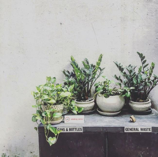 Tìm đâu xa, Sài Gòn cũng có 1 loạt các homestay xinh xắn và siêu cool! - Ảnh 10.
