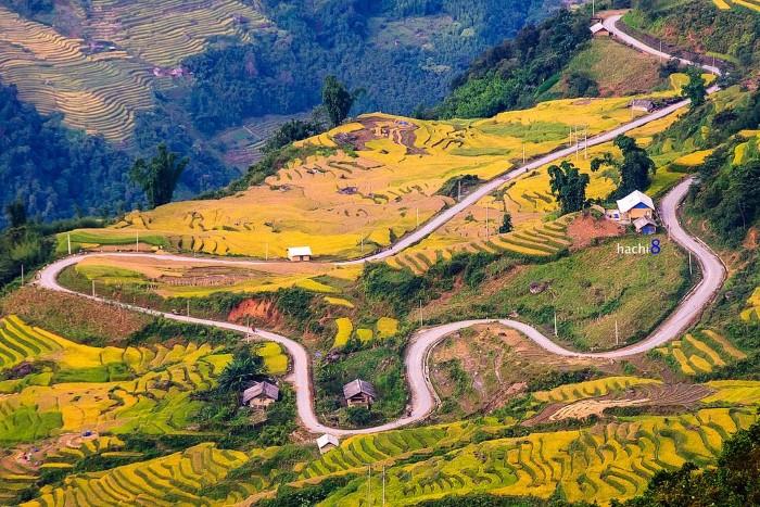 Quanh co qua những mùa hoa, mùa lúa - Ảnh: Ngô Huy Hòa