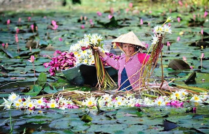 Nét đẹp miền Tây - Ảnh: Huynh Phuc Hau
