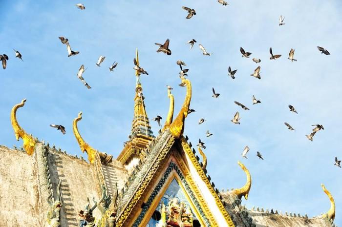Có những câu chuyện được chia sẻ trong hành trình khám phá ấy - Ảnh: Huynh Phuc Hau