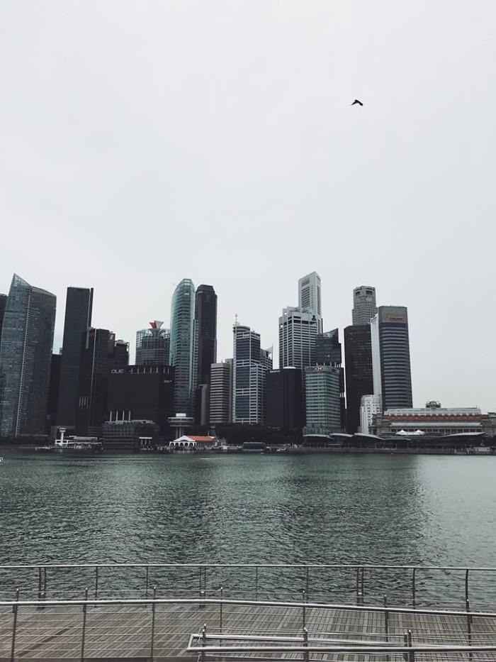 Singapore từ ống kính của Iphone 7 plus - Ảnh: Long Trần