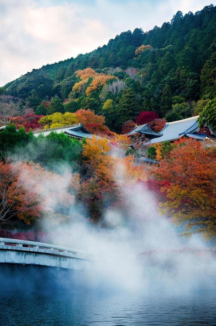 Nhật Bản rực rỡ sắc màu lúc vào thu - Ảnh: Benjamin Planche