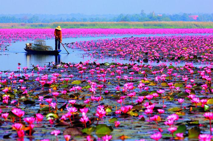 Cách Nong Khai 55 km, Udon Thani là tỉnh có nền kinh tế phát triển hơn nhưng không vì thế mà mất đi vẻ đẹp tự nhiên vốn có.