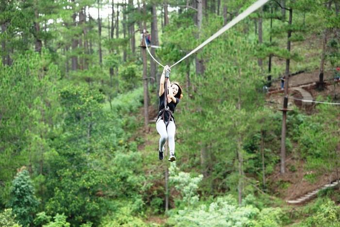 Bạn có muốn được bay lượn xuyên rừng thông xanh tươi ở Đà Lạt không nào