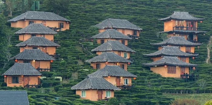 Ngôi nhà nhỏ rải rác trên đồi chè