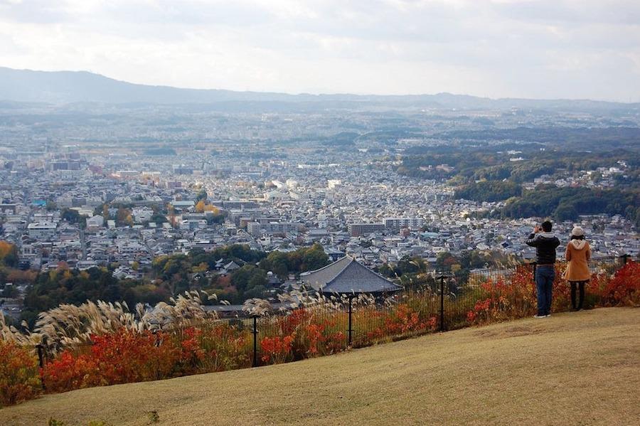 Nara là thành phố thuộc tỉnh Nara, Nhật Bản, đồng thời là cố đô của đất nước hoa anh đào đến năm 784.