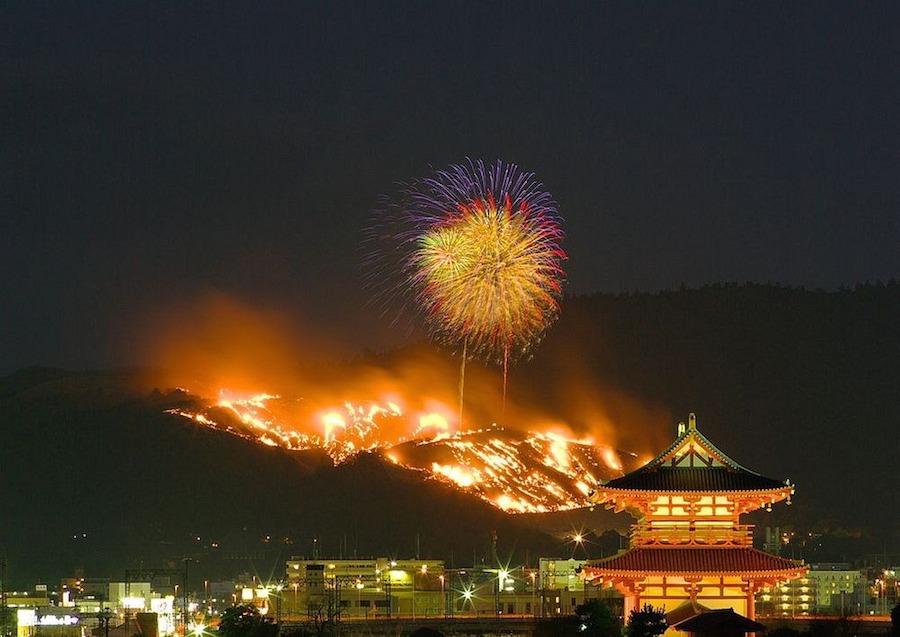 Ban đầu Wakakusa được bao phủ bởi cỏ lau, hai bên sườn núi trồng hoa anh đào nở rộ vào đầu tháng 4. Tuy nhiên, khi mùa đông đến, cỏ úa vàng và anh đào rụng lá, ngọn núi trở nên trơ trọi, u ám. Đây cũng là thời điểm lễ hội Wakakusa Yamayaki nổi tiếng bắt đầu.