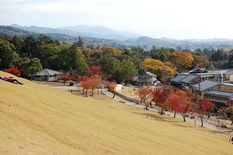 Du khách có thể nhìn thấy màn đốt núi hoành tráng này tại bất cứ điểm nào ở Nara.