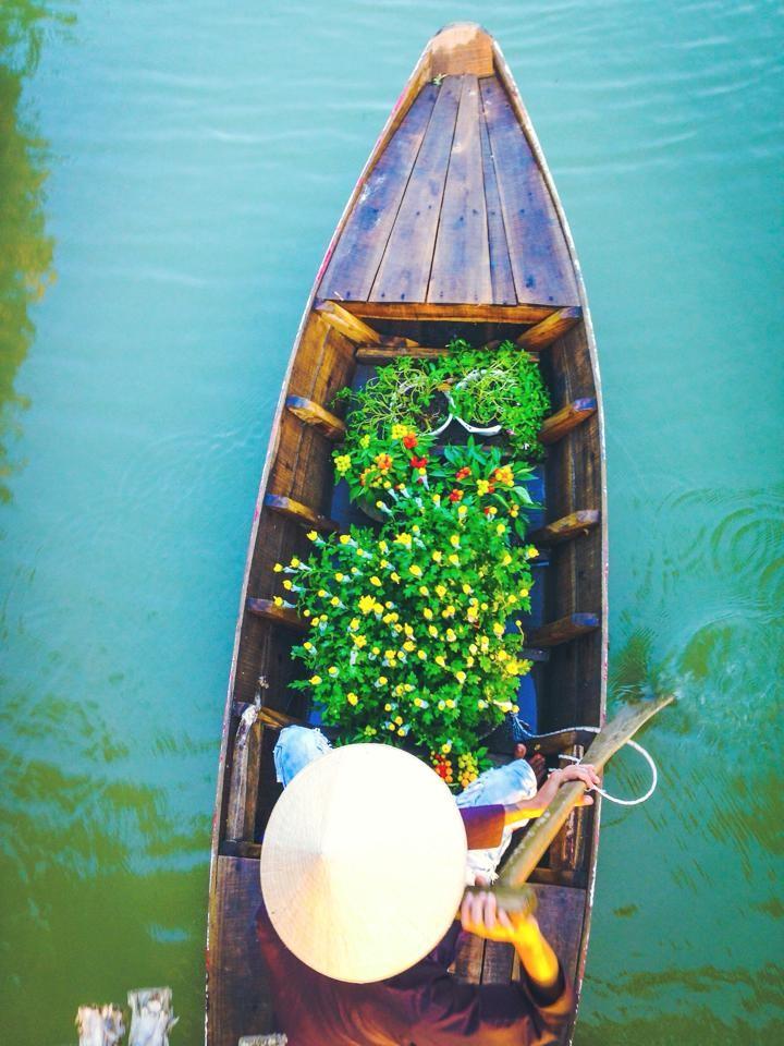 Thuyền hoa lững lờ trên dòng sông