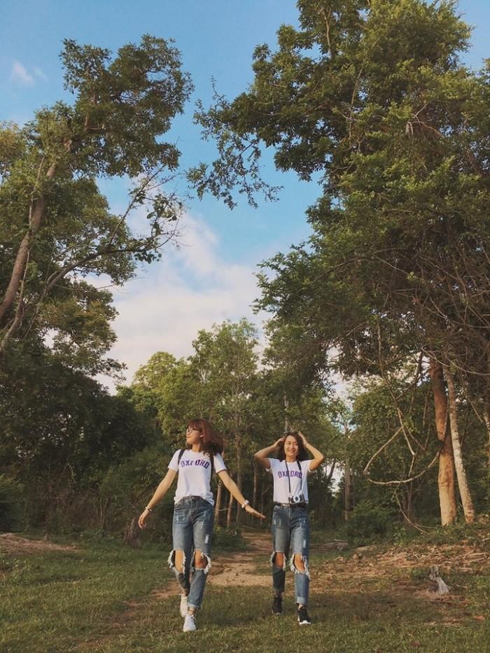 Vào rừng tìm theo dấu chân voi