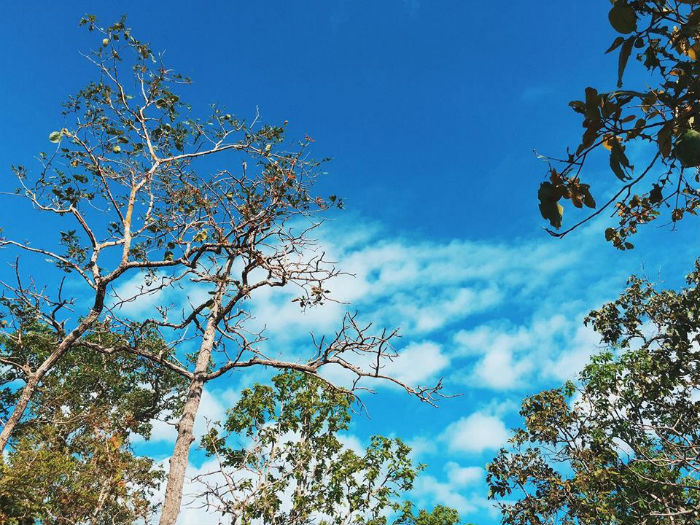 Bầu trời xanh trong tuyệt đẹp ở đây