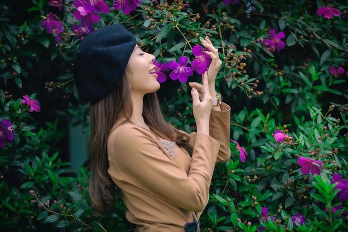 Đà Lạt mùa xuân cho kẻ yêu nắng ấm, cỏ hoa