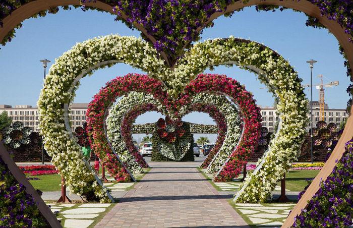 Dubai Miracle Garden, Dubai