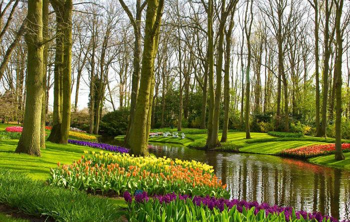 Keukenhof, Hà Lan