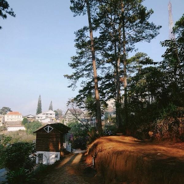 Thêm một căn nhà cực xinh xắn chứng minh Đà Lạt đúng là thiên đường homestay! - Ảnh 1.