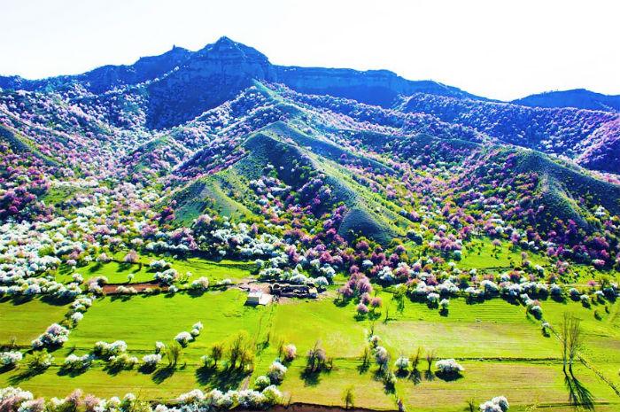Thung lũng rực rỡ khi nắng lên