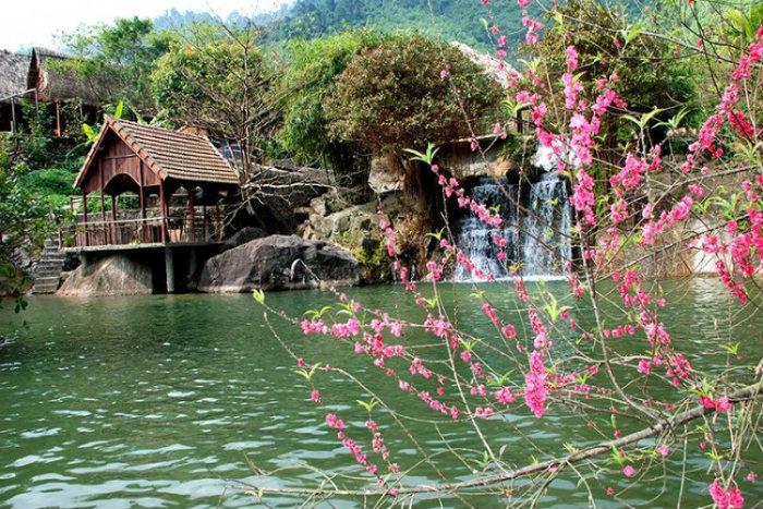 Hoa 'thẹn thùng' bên hồ