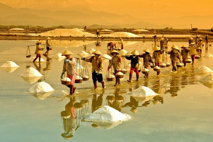 Đồng muối Việt Nam với vẻ đẹp bình dị giữa hoàng hôn