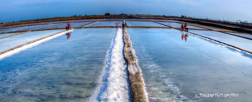 Đồng muối - hình ảnh dễ dàng bắt gặp ở Việt Nam