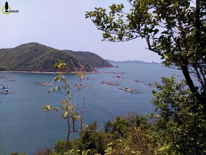 Quang cảnh vịnh nhìn từ trên đảo Nhất Tự Sơn, xung quanh là các ghe thuyền, nhà bè nuôi tôm hùm. Cũng giống như thị xã Sông Cầu, Đầm Cù Mông kế bên, nơi đây cũng là một trong những vựa hải sản nổi tiếng nhất của xứ Nẫu.