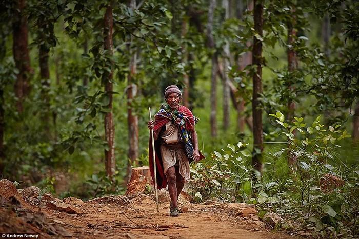 Theo nhiều nguồn lịch sử, họ thuộc một nhóm người nguyên thủy sống từ hàng chục nghìn năm trước, khi nông nghiệp mới được bắt đầu.Raute là những người đi săn thực thụ, họ đặt bẫy những con khỉ để lấy làm thức ăn. Ngoài ra, bộ tộc này sống dựa vào môi trường rất nhiều, bởi họ không trồng trọt.