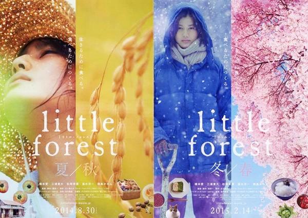Poster phim: Hạ Thu và Đông Xuân