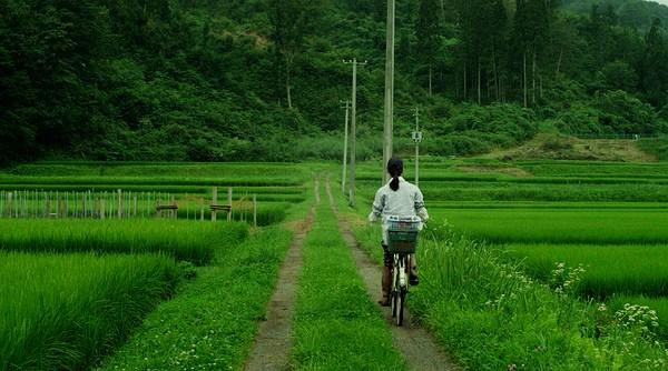 Dù mất 30 phút đạp xe từ nhà ra đến thị trấn, khung cảnh đẹp nao lòng này khó mà khiến Ichiko cảm thấy gian nan