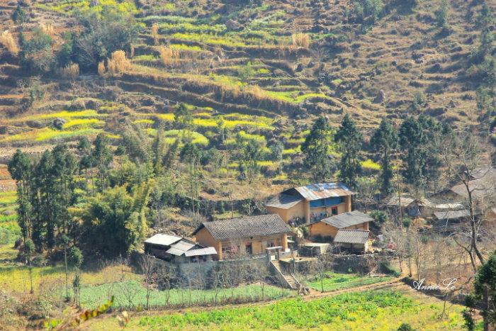Những ngôi nhà nhỏ nằm giữa thung lũng đẹp xinh