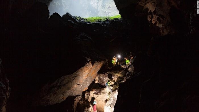 Các hố sụt khổng lồ trên trần hang cho phép ánh sáng có thể lọt vào và giúp các loài thực vật phát triển ở ngay bên trong hang.