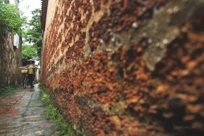 Bức tường đá ong
