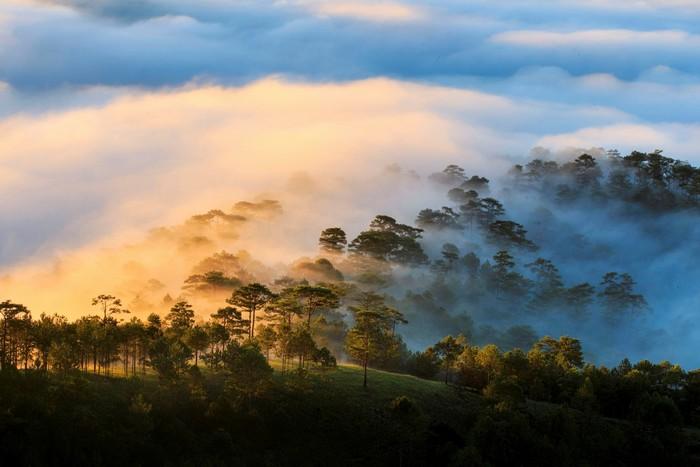 Đà Lạt trông như một thành phố trên mây