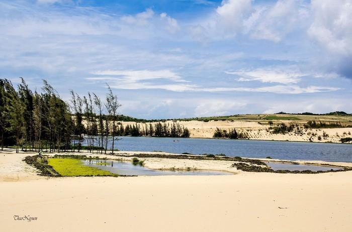 Hồ Bàu Trắng đẹp như ốc đảo giữa sa mạc