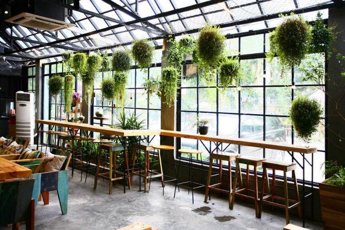 Không gian chính của quán là một ngôi nhà mái khung thép, bên trong không ngăn chia, một nửa các bức tường là vách kính và điểm nhấn thu hút chính là mảnh vườn treo.