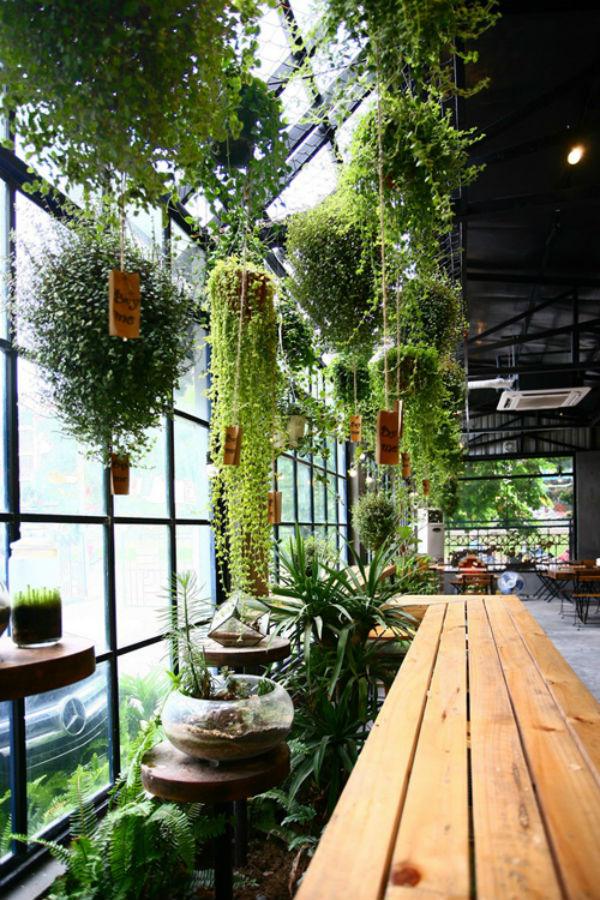 """Các chậu cây ở vườn treo phía trước đều đeo tấm biển """"Buy me"""".Ở dưới là một bàn dài với ngồi ghế cao theo kiểu bar, dành cho những ai thích hướng ra sân bên ngoài."""