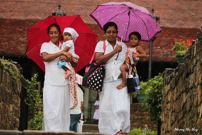 Những phụ nữ Sri Lanka vừa bước ra từ ngôi chùa Phật Nha (Dālada Maligawa).