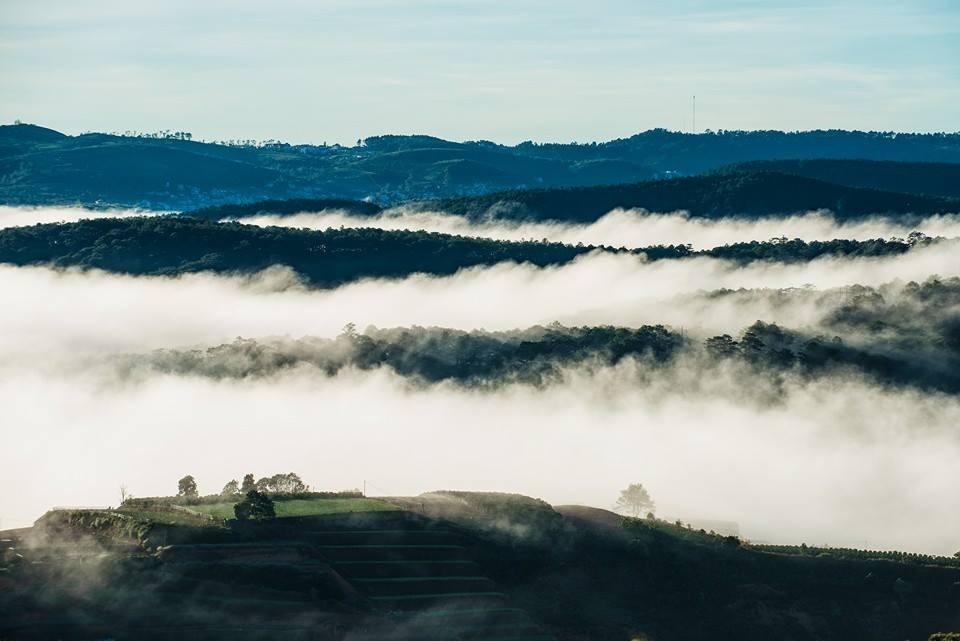 Xứ sở sương mù Đà Lạt