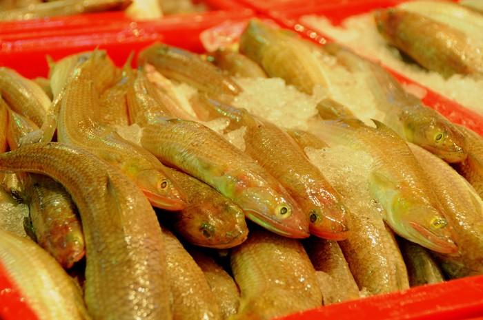 Cá mối còn tươi. Đây là loại cá mà nhiều người chỉ có thể thấy ở dạng cá kho. Chợ còn bán cả cá nhám, cá mập, những loại có giá thành rất cao, thường chỉ cung cấp cho các nhà hàng sang trọng.