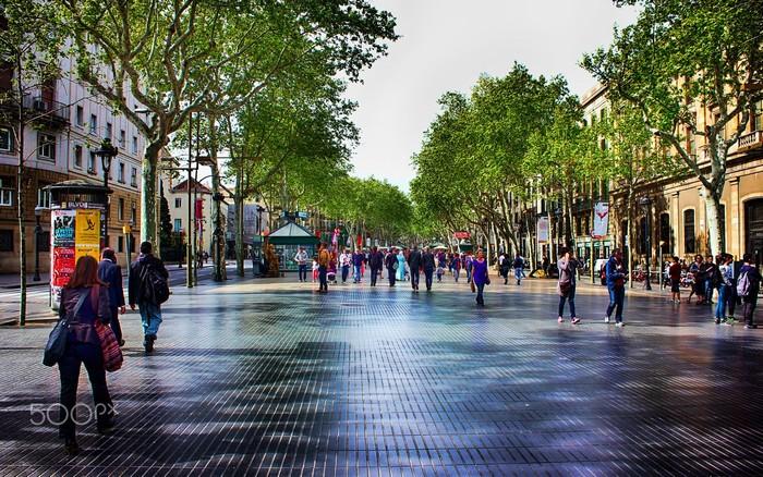 Cung đường đi bộ ngập tràn màu xanh hai lối