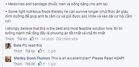 Cộng đồng mạng Việt Nam sôi sục tìm kiếm phượt thủ Anh mất tích tại Sapa 1